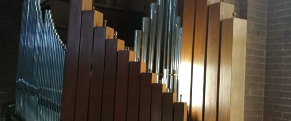 organo2